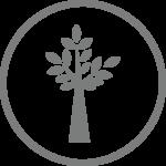 hardwood icon